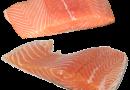 ¿Te gusta el salmón? Estas son las empresas salmoneras que usan más antibióticos